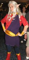Dragon Con 2010 - 050 by guardian-of-moon