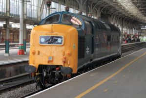 The Class 55 by CJSutcliffe