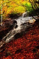 Autunno, visione personale by WelshGlue