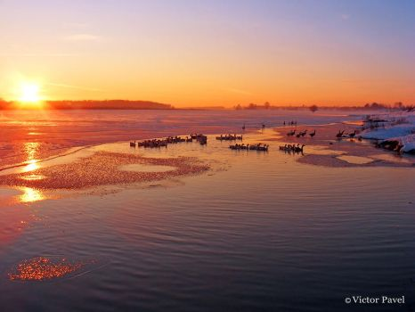 winter sunset 1 by victor23081981