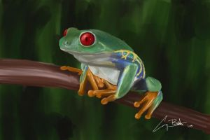 Tree Frog by cbutlerc