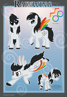 Rainwing Reference by Lachtaube