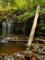 Ricketts Glen State Park 40 by Dracoart-Stock