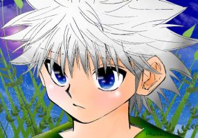 Killua colored by Akane1412