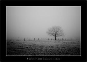 Cold lonely tree by sandervandenberg