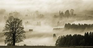 Bavarian morning by mutrus