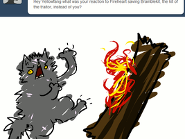 .:AW-Animated Dump:. Yellowfang 1 by Spottedfire-cat