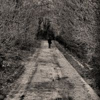 byway by pauljavor