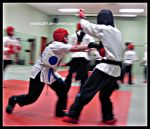 Tae Kwon Do 2874 by anubis281
