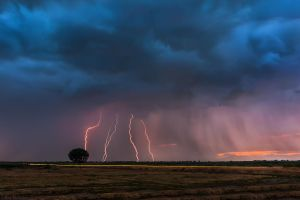 Lightning storm over the tree by NickKoutoulas