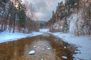 Calm Black Hills Stream by MikeDaBadger