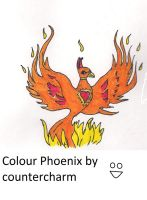 Phoenix Drawing colour by countercharm