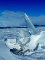 Ice Sculptor II by dendrology