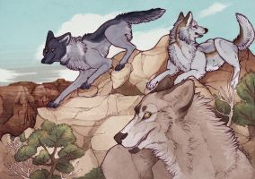 Canyon Siblings -Commission- by Ailoncha