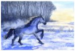 Winter gallop by DappleHack