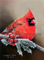 """Cardinal"" - Realism by robybaer"