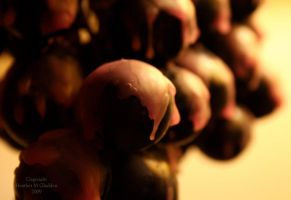 Melted Grapes by DrivenSphere