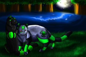 A calm night by Ymia-the-cheetah