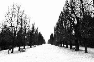 White Alley by DreamingSkyline
