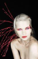 Red Series 2 by laurna