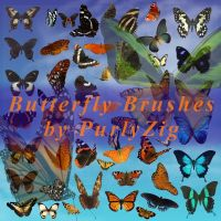 Butterfly Brush Set by PurlyZig
