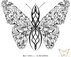 butterfly in reverse by sbr