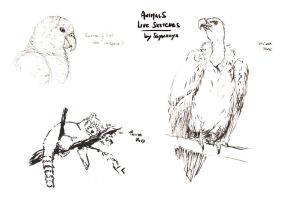 Animals live sketches 05 by Ssynahya