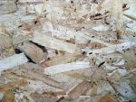 Plywood 01 by Limited-Vision-Stock