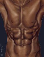 Torso Study by Silver-DT
