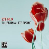 Tulips on a late spring- piano music by AndreiPavel