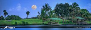 Okeeheelee-Park-Super-Moon-Rising-West-Palm-Beach by CaptainKimo