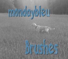 Brushes-title-picture.jpg by mondaybleu