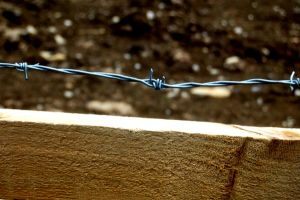 Barbed Wire On Skin. by J-Payden