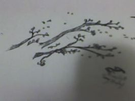 Quick Draw of a Cherry blossom by ZombieBerlioz