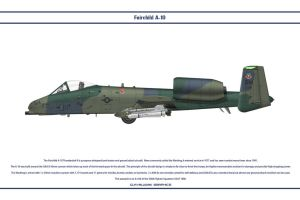 A-10 358th FS 1 by WS-Clave
