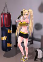 MMA training by opcrom