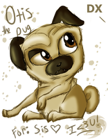Gift: Otis the Pug by Chico-2013