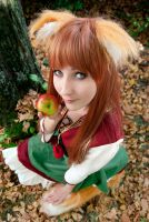 Connichi 2012 - Horo , spice and wolf by Gildartz88