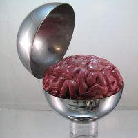 Brain Sphere by Phanattic