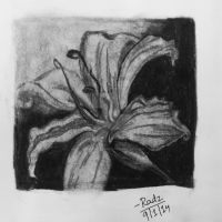 Charcoal Lily by FirewhiskeyRadz