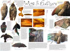 Feathered Wing Tutorial by Solarstormflare