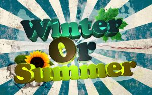 Winter or Summer by ShiLo33