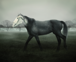 2011 Ghost horse by harbek