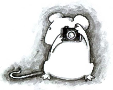 The Photographic Mouse by Mablox