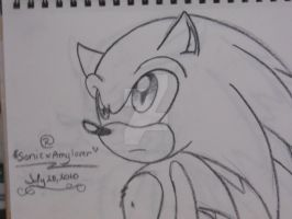 sonic the hedgehog by sonicxamylover