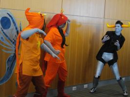 Nekocon pictures 33 by dogo987