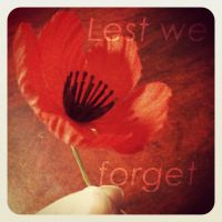 ~Lest We Forget~ by Belynx16