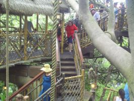 Swiss Family Robinson Treehouse by BluebottleFlyer