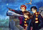 harry potter by anothercrazydannyfan