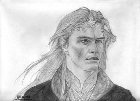The Elvenking, Thranduil by Elflover21